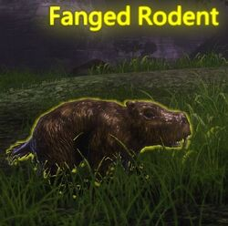 Fanged Rodent