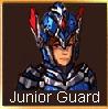 Junior guard