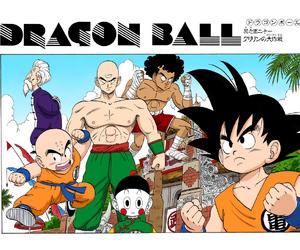 Dragon Ball Chapter 121