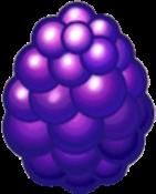 Berry Dragon Egg