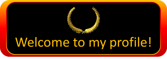 File:ExampleBanner.png