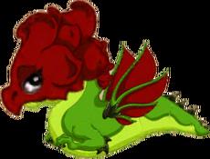 RoseDragonJuvenile