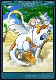 Card god