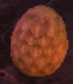 Mysterious Anniversary Egg