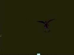 Bird thing