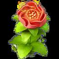 Res scarlet flower 1