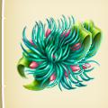 Underwater blossom