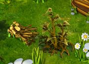 Brushwood resource