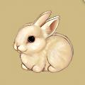 Coll easter rabbit
