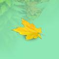 Autumn leaf bonus