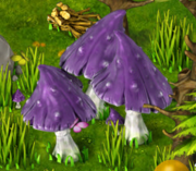 Mushrooms resource