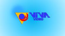 VivaVideo2001 DVD Wide