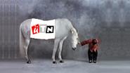 UTN sting january 2014