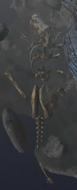 Rd skull 2