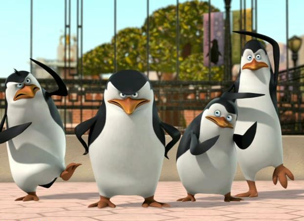 File:Skipper... you're forgetting to pose!.jpg