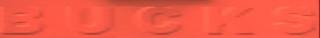 Bucks-DPL-logo