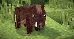 Boar - New Skin