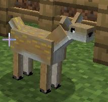 File:Baby Deer.jpg