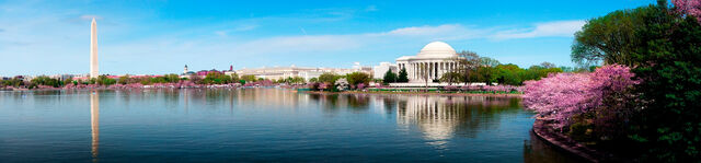 File:Washington, D.C..jpg