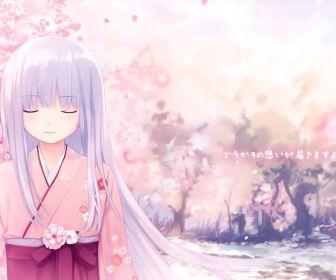 File:Cherry blossoms kimono white hair japanese clothes anime desktop 3517x2000 hd-wallpaper-1184617.jpeg