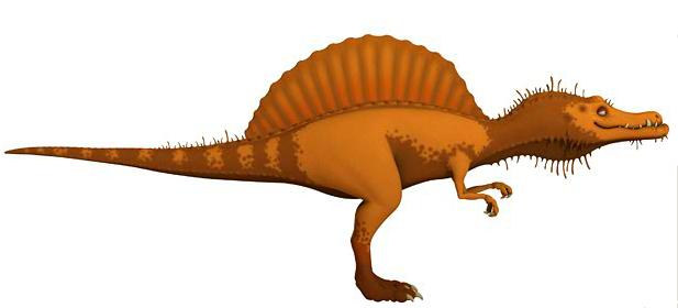 spinosaurus dinosaur train wiki fandom powered by wikia