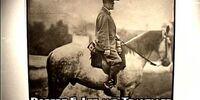 Traveller (horse)