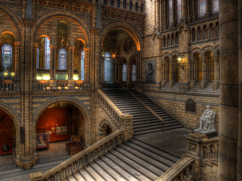 Hogwarts-moving-staircase-
