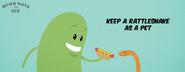 Keep-a-rattlesnake-as-pet dumb-ways-to-die