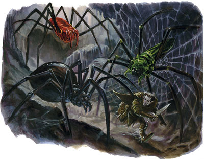 File:Spiders.jpg