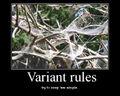 MP variant rules.jpg