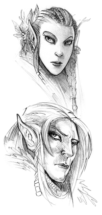 DnD-Elves