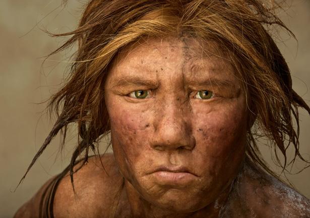 File:Neanderthal-615.jpg