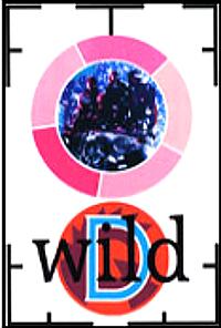 Duran duran wild dvd