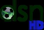 DSN HD logo