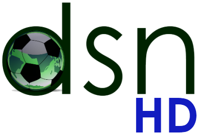 File:DSN HD logo.png