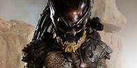 Berkvesker Predator