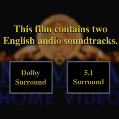 The audio track selection screen.