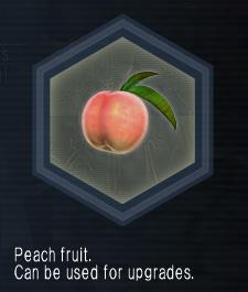 PeachFruit