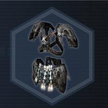 Bone Armor P