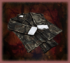 Master's Cloak (DW3)