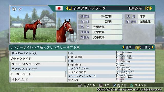 File:Horsedirect4-wp82016dlc.jpg
