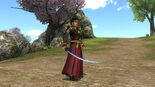 Katana Weapon Skin (SW4 DLC)