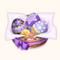 Kanzaki Signature Easter Egg (TMR)
