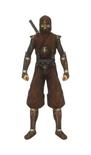 Ninja Concept (SW)