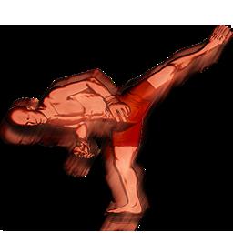 File:Aldo spinning side kick head action.png