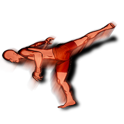 File:Spinning side kick head action.png