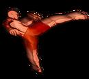Jumpround Kick
