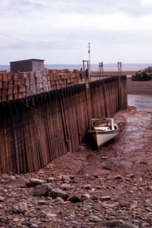 File:Bay of Fundy Low Tide.jpg