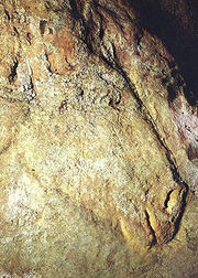 Cheval-detail-bas-relief-delluc