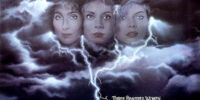 The Witches of Eastwick (film)